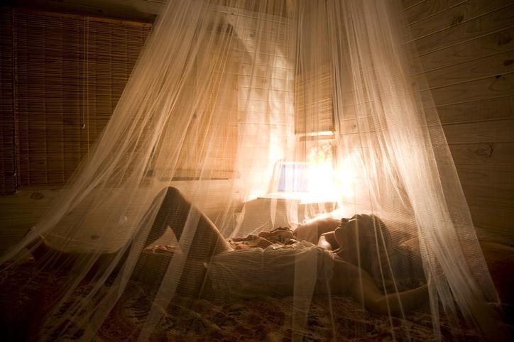 moskitiera na łóżku